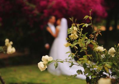 Shoots By Design Bridal Portraits 17