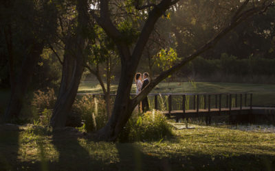 {STYLED SHOOT} – Forest Nymph | Solms Delta
